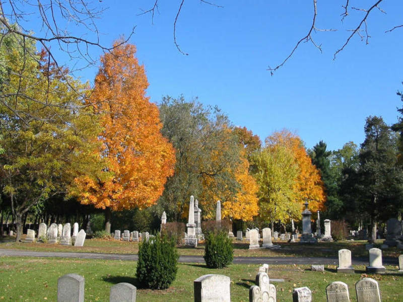 Image of historic Vale Cemetery